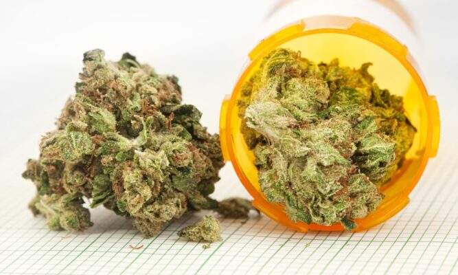 HOW TO BUY CANNABIS ONLINE